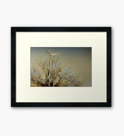 An Insects Umbrella Framed Print