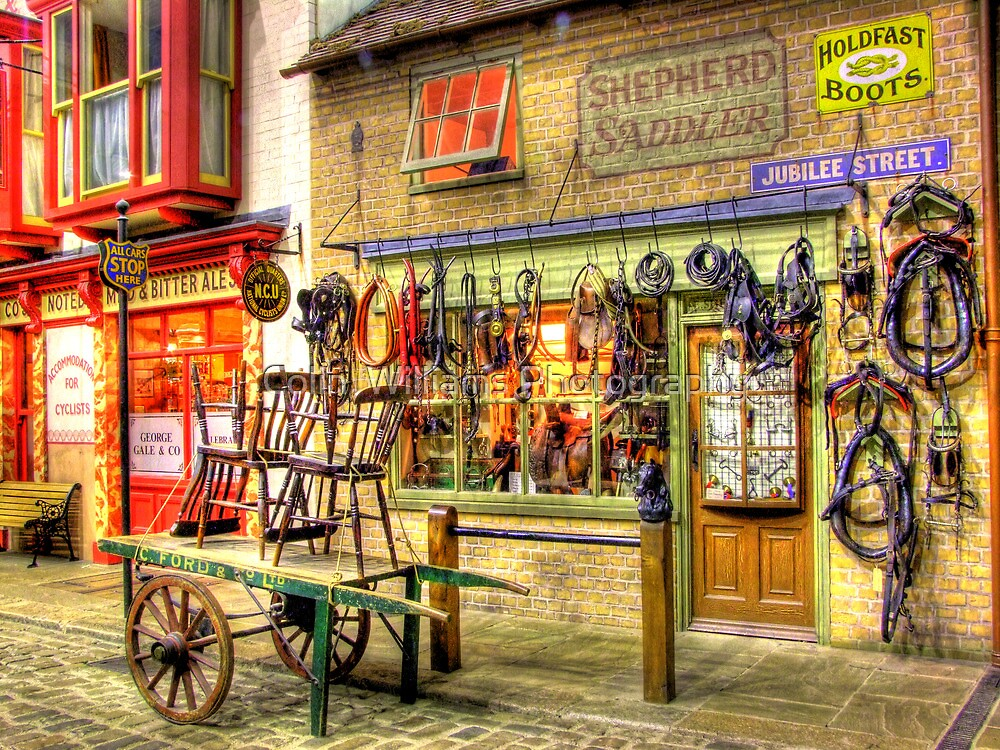Shepherd Saddler  - HDR by Colin  Williams Photography