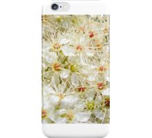 Blossom Strip iPhone Case/Skin