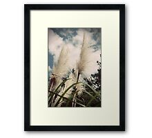 Feathered Brush Framed Print