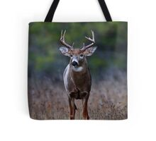 Standing rut in front of me - White-tailed Deer Tote Bag