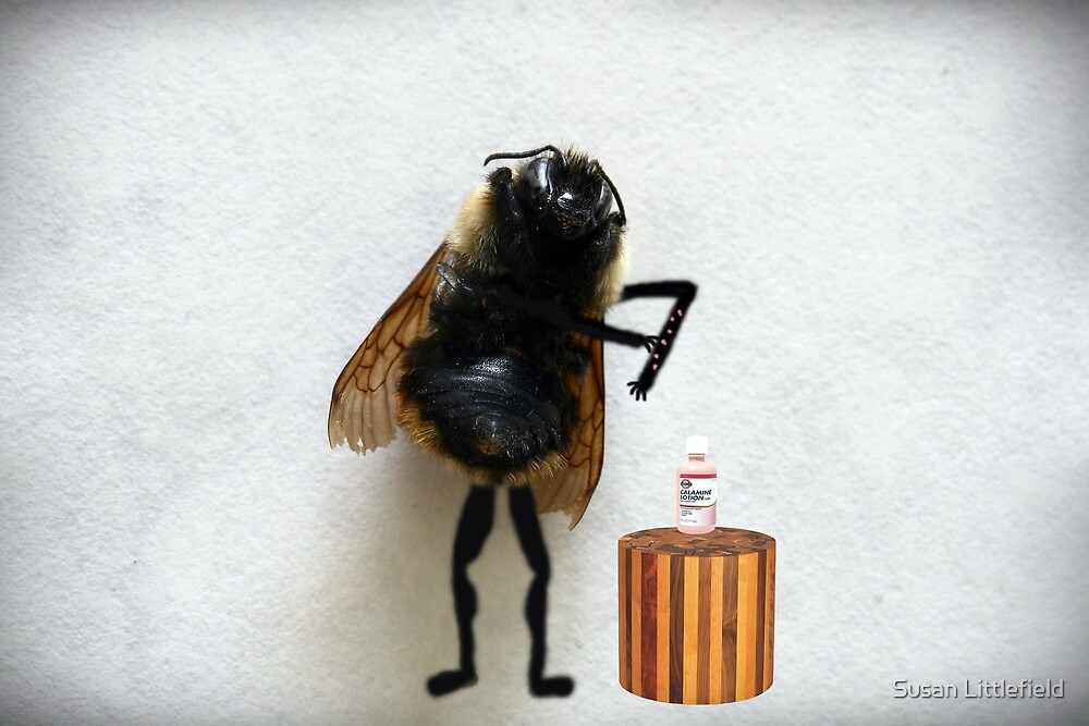 Beehives by Susan Littlefield
