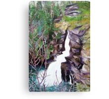 'Linville Falls' Canvas Print