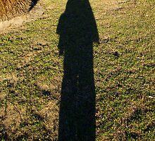 Tall I stand by Sandra Chung