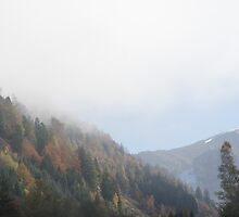 Styrian Mountains by WET-photo