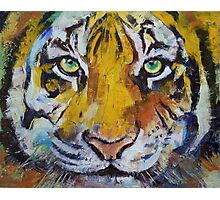Tiger Psy Trance Photographic Print