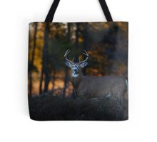 A big 7 pointer - White-tailed Deer Tote Bag