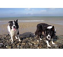 Rob and Indy Photographic Print
