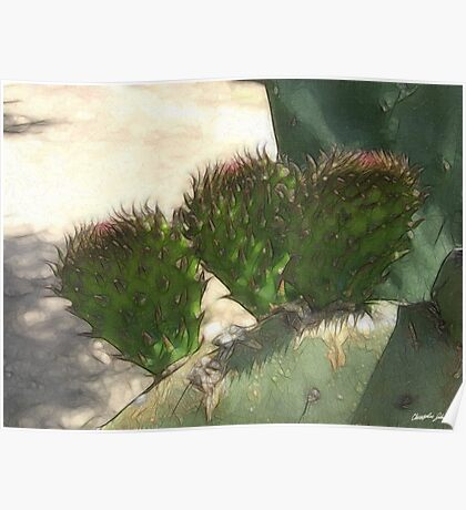 Fresh Cactus Pads Enhanced Poster