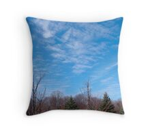 A Perfect November Day Throw Pillow