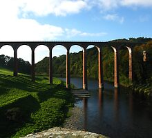 Leaderfoot Viaduct Near Melrose, Borders, Scotland by artwhiz47