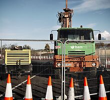 The notorious  traffic cones by embracelife