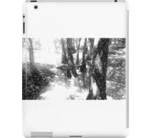 Sketchy Forest iPad Case/Skin