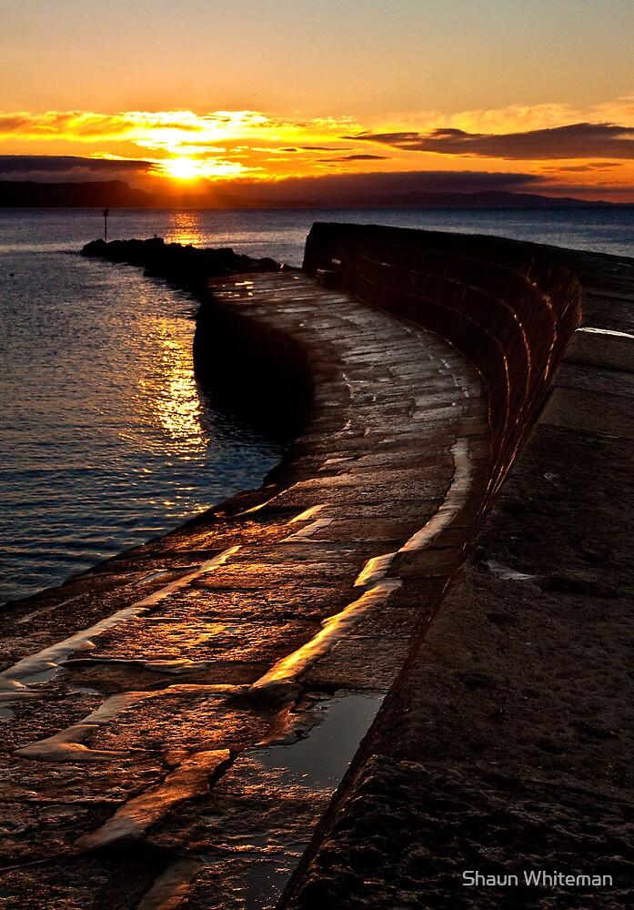 Golden sunrise over Lyme Regis Cobb by Shaun Whiteman