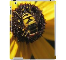 Hoverfly on Blackeyed Susan Macro iPad Case/Skin