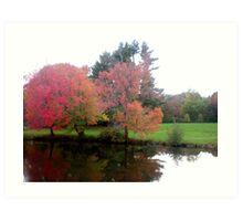 Loomis Chaffee Academy Grounds-Pond View Art Print