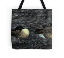 2 Geese In The River Tote Bag