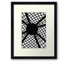 Center Cage Framed Print