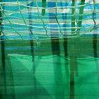 The net background by dominiquelandau
