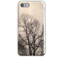 Winter Mornings  iPhone Case/Skin