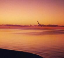 Sunset part 1, Mothers Beach Mornington Sticker