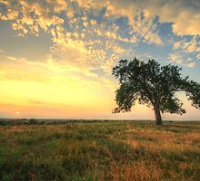 Warming Lands - Sunset on the Prairie by Evan Ludes