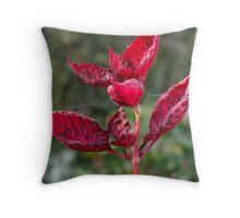Plant in Botanic Gardens Throw Pillow