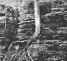 Rock Climbing by Marcia Rubin