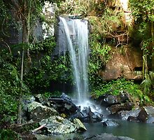 Curtis Falls ..... Mt Tamborine  Qld by BK Photography