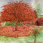 Autumn & it is gone by Anne Gitto