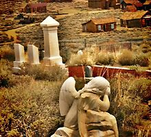 Graveyards and Ghost Towns by Barbara  Brown
