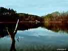 Lake Keowee by Marcia Rubin