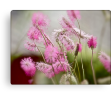 Silky spring flowers &  Albatross  by Brown Sugar. views (267) Favs (3) Thx!    ) . Featured in Spring Blooms.Thanks !!! Canvas Print