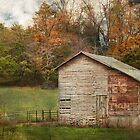 Rural America by bettywiley