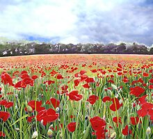 Remember Poppy Day Art With Blue Sky by Poppy-Art