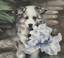 Pepper and blue iris by Sherry Cummings