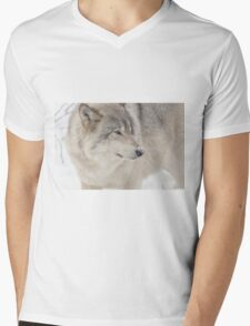 Timber wolf in winter Mens V-Neck T-Shirt