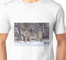 Timber wolf in winter Unisex T-Shirt