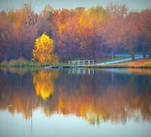 Textured Autumn Trees by Linda Miller Gesualdo