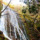 Mingo Falls by vasu