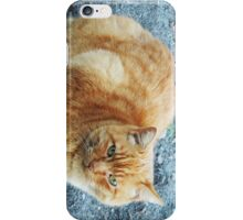 Ginger Glare iPhone Case/Skin