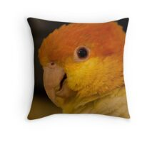 Multi colored! Throw Pillow