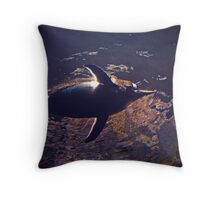 Penguin from Up High  Throw Pillow