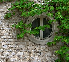 Round window and vines by CreativeUrge