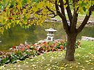 Autumn - Kurimoto Japanese Garden by Roxanne Persson