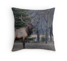 Watchfull Bull Throw Pillow