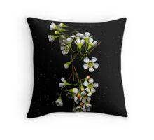 Chamelaucium uncinatum (Geraldton Wax). Flower scan. Throw Pillow