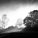 The sun is hiding... by Reymond Go