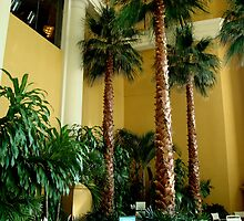 Borgata Pool Palms (indoor trees) by ctheworld