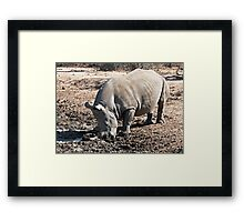 Who Called Me a Stick In the Mud? Framed Print